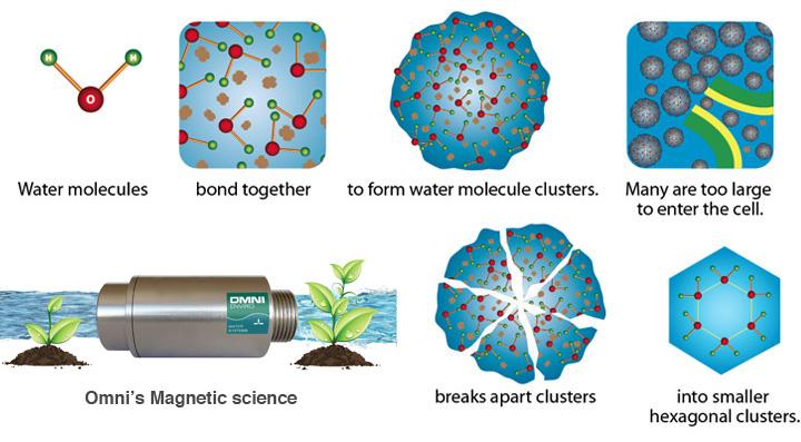 Magnetic-Resonance-Process-System2