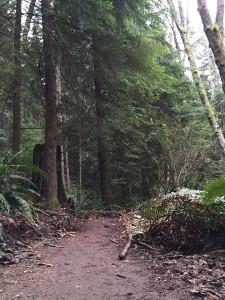 walk-trail-oyster